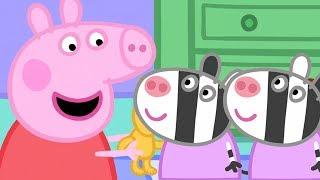 Download Peppa Pig en Español 🎁 Zaza y Zuzu! | 1 Hora | Dibujos Animados Video