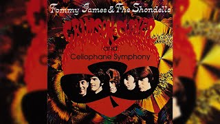Download Tommy James & The Shondells - Crimson and Clover Video