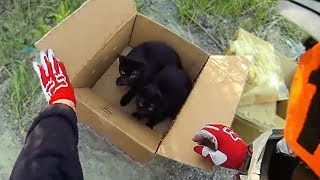 Download BIKER FINDS KITTENS! Random Acts of Kindness 2017 - Bikers Are Awesome - [Ep.#36] Video