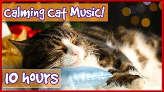 Download Calming Music For Cats! Soothe Your Cat With Soft Music and Help Them Relax! Reduce Stress & Anxiety Video