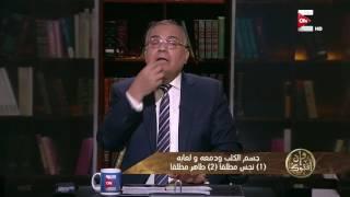 Download وإن أفتوك - حكم طهارة جسم الكلب ودمعه ولعابه .. د. سعد الهلالي Video