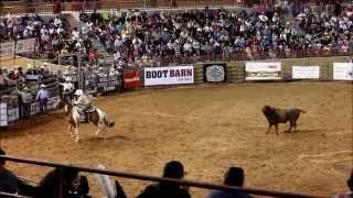 Download For Sale: Pickup Horse, Team Roping Horse, Bull Dragging, Roping Ranch Horse Video