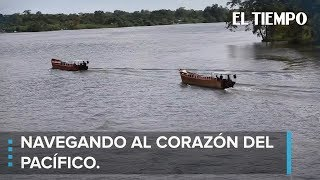 Download Una expedición al corazón del Pacífico olvidado l EL TIEMPO Video