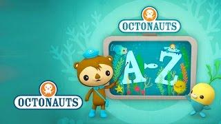 Download Octonauts: Creatures A to Z (UK Version) Video