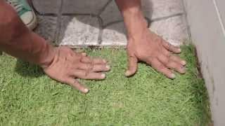 Download เปลี่ยนมุมเปล่าเป็นมุมโปรด ตอน แต่งสวนข้างบ้านด้วยกระเบื้องปูพื้น เอสซีจี Video
