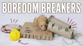 Download How to keep your hamster BUSY Video