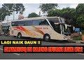 Download Murni Jaya e52 Sikat Alfarruq | Suara Orisinil Sang Driver!! Video