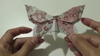 Download Origami Butterfly Series #2: Alexander Swallowtail Instructions Video