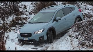 Download SUBARU XV Driving Offroad Video