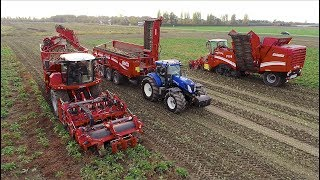 Download Grimme Sugar-Beet Harvesting Demo | Rextor / Maxtron / Rootser / RUW 4000 Video