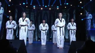 Download K-Tigers @ YouTube FanFest Korea 2014 Video