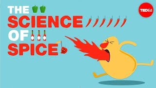 Download The science of spiciness - Rose Eveleth Video
