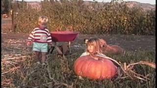 Download Pumpkin Patch Video