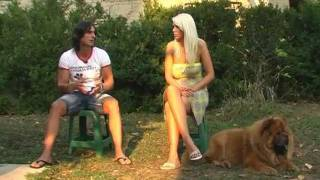 Download Emisija Moj Ljubimac CHOW CHOW Henry & Bella Blue Mystery odgajivacnica Video