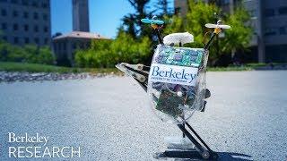 Download SALTO - Teaching an old robot new tricks Video