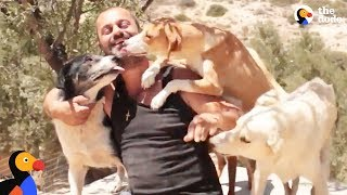 Download Man Gives Up Everything He Owns To Save Stray Dogs | The Dodo Video