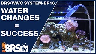 Download Ep16: How to do water changes for a dream saltwater tank? - The BRS/WWC System Video