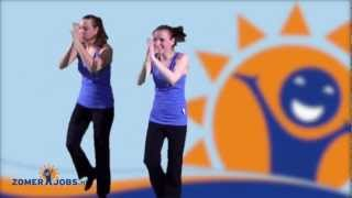 Download Zomerjobs - Le Musicien Video