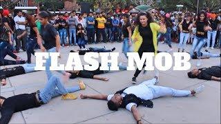 Download THE DANCE MAFIA | FLASH MOB 2017 | CHANDIGARH SEC 17 | Ripanpreet sidhu Video
