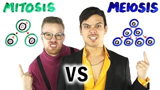 Download Mitosis vs Meiosis RAP BATTLE! Video