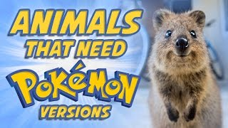 Download Top 5 Animals That Need Pokemon Versions Video