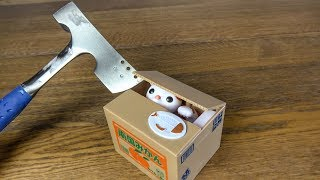 Download What's inside a Cat Coin Bank? Video