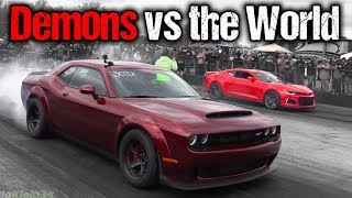 Download Dodge Demon Takes on EVERYTHING! Camaro ZL1, GT350, Corvettes, Much More! Video