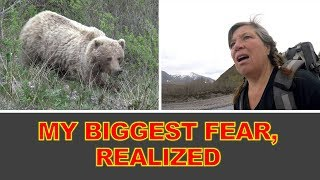 Download I Meet Mama Grizzly & Cub on a Solo Hike in Denali National Park, Alaska! Video