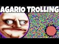 Download AGARIO Funny Moments | Trolling People In Agar.io #8 Video