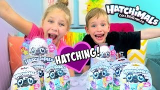 Download HATCHING Baby Animals! Hatchimals Colleggtibles: Surprise Eggs Inside Blind Bags! Video
