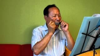 Download [눈물젖은두만강] 문광호 / 하모니카 연주 (2013.7.23) Video