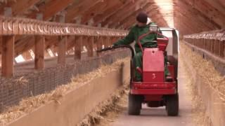 Download норковая ферма Video