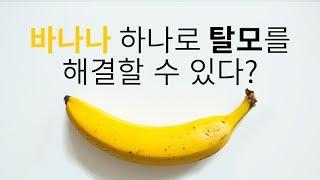 Download 바나나 하나로 10분만에 탈모를 해결할 수 있다? 채널A 돈나와라뚝딱 2회 Video