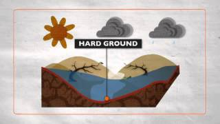 Download Floods explained Video