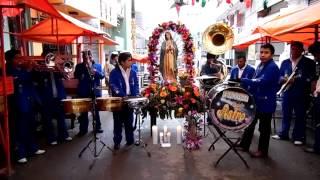 Download La Guadalupana con la banda Astro Video