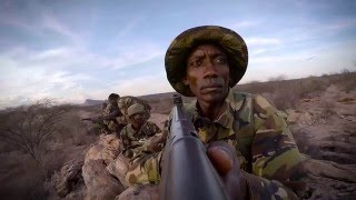Download Anti-Poaching In Africa Video