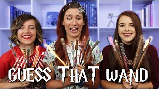 Download Blind Harry Potter WAND Challenge! ft. Cherry Wallis and Tessa Netting Video