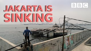 Download Jakarta is sinking! - Equator from the Air - BBC Video