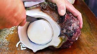 Download ALIEN SEA SNAIL Japanese Street Food Video