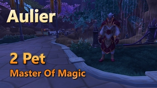 Download Aulier Master Of Magic Family Familiar Master Of Pets 2 Pet Leveling Strategy Video