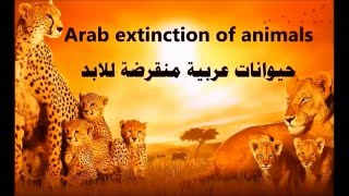 Download حيوانات عربية منقرضة للابد والباقية في خطر Video