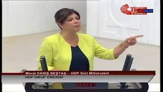 Download Meral Danış Bektaş | Meclis Konuşması | 24 Temmuz 2018 | Suruç'ta Yaşanan Olaylar Video