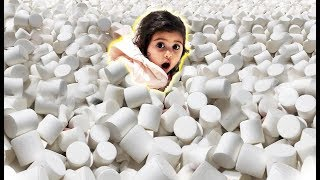 Download ELLE GETS STUCK IN 1 MILLION MARSHMALLOWS!!! (INSANE MARSHMALLOW POOL) Video