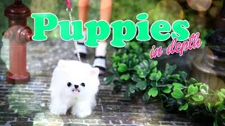 Download DIY - How to Make: Cute Doll Puppies - In Depth - Handmade - Craft - 4K Video