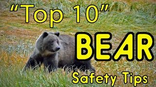 Download ″Top 10″ BEAR Safety Tips (or HOW TO AVOID BEING EATEN ALIVE!) Video