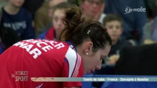 Download Visages du sport : Tennis de table France - Slovaquie Video
