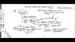 Download How to study for USMLE step 1 Video