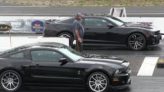 Download Shelby Super Snake vs ZL1 Chevy Camaro-1/4 mile drag race Video