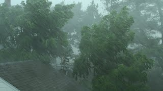 Download Heavy Rain and Wind Sounds For Sleeping / Relaxation - 10 Hours Video