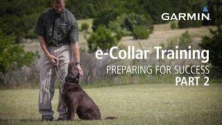Download e-Collar Training: Preparing for Success, Part 2 Video